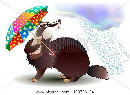 Illustration of little badger holding umbrella, vector cartoon image.