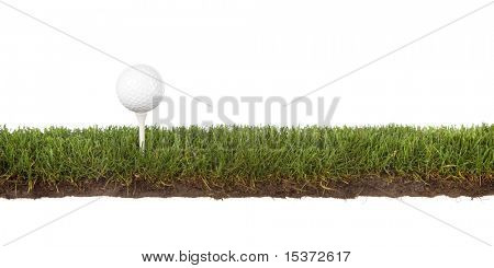 cross section of grass with golf ball on tee
