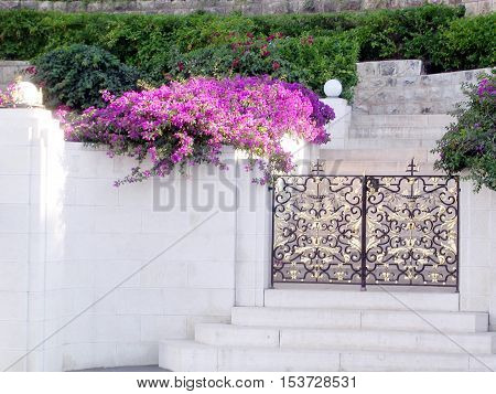 Flowers and gate in Bahai Gardens in Haifa June 28 2004