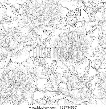beautiful monochrome black and white seamless background. peonies with leaves and bud. for greeting cards and invitations of wedding birthday Valentine's Day mother's day and other seasonal holiday