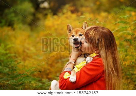 Girl kissing Shiba Inu dog in autumn park. Pedigree dog. Funny animals and their owners. Riot of colors of nature. Outdoor Activities.