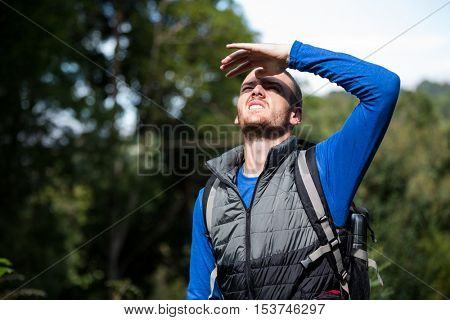 Male hiker shielding his eyes in forest