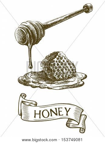 Dipper stick with dripping honey and honeycomb. Vector sketch on a white background