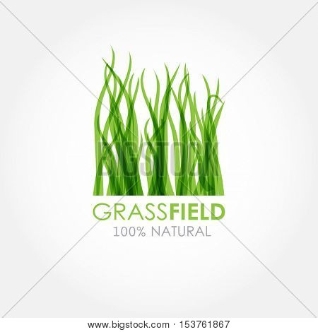 Abstract green grass logotype. Vector nature grass logo design