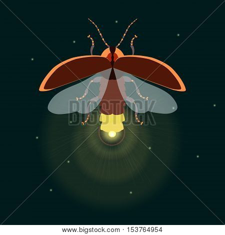 Lightning bug with its wings open. vector illustration.