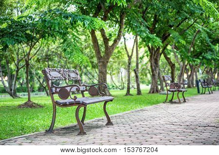 Focus on vintage brown iron seat on footpath inside green public park having green trees along the way behind each seat.