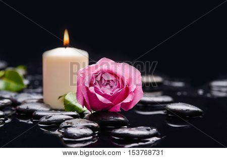Pink rose with candle ,green leaf and therapy stones