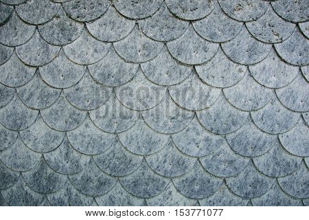 wall covered with scaly elements of fibrous material flake