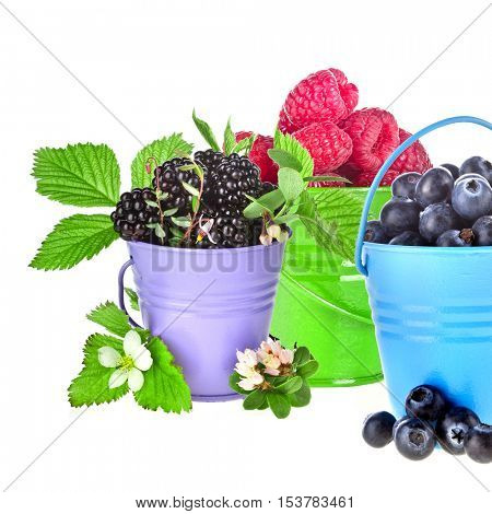 Blackberry dewberry. raspberries, blueberries. Fresh tasty forest garden berries in colored bucket with fresh green leaves and flower, collection set close up isolated on a white background.