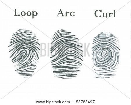 Set of fingerprints icons, id security identity fingerprint. Vector illustration eps10