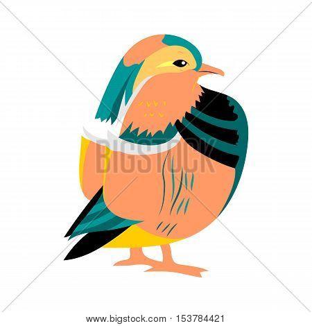 Hand Drawn Mandarine Dark. Exotic Oriental Cute Bird Isolated on White. Perfect for Print. Vector Illustration.