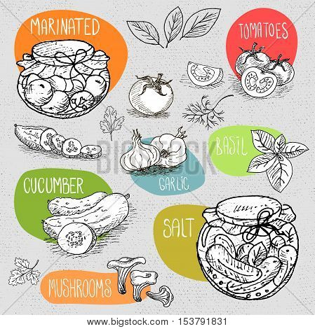 Set of stickers in sketch style, food and spices, old paper textured background. Pickles in the jar, dill, cucumber, tomato, garlic, bay leaf. Hand drawn vector illustration.
