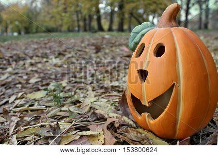Halloween lantern pumpkin in the forest close up