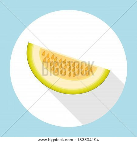 Slice of galia melon with long shadow. Muskmelon - Galia. Honeydew melon