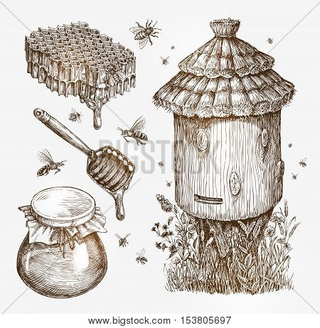 Honey, beekeeping, bees Collection sketch vector illustration