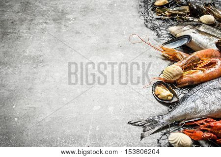 Fresh Seafood With A Fishing Net.