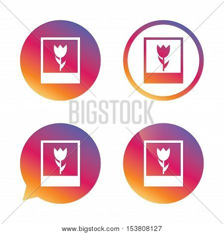 Macro photo frame sign icon. Flower photography symbol. Gradient buttons with flat icon. Speech bubble sign. Vector