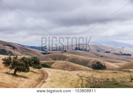 Northern California Landscape, Winter Day, Garin Regional Park, Hayward, California, USA. Alameda County East Bay winter day of rolling hills and oak trees on a cloudy winter day.