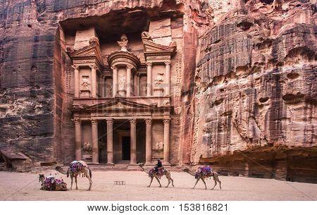 Journey to Jordan, Petra. Camels at the Treasury