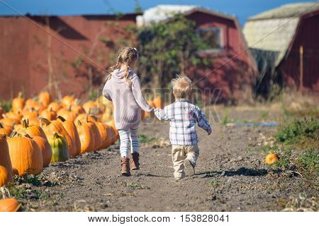 Big sister and her little brother running to choose the best pumpkin at the farm farmhouses on the background