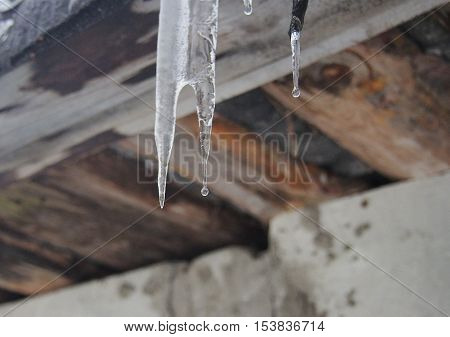 With icicles hanging on the roof of dripping water droplets. Thaw. Winter. Spring.