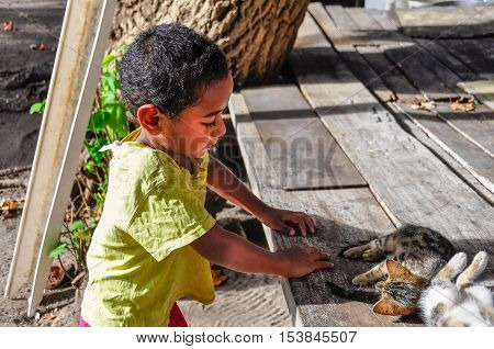 MANA ISLAND, FIJI - AUGUST 20, 2012: Boy playing with cat in a local village in Mana Island Fiji