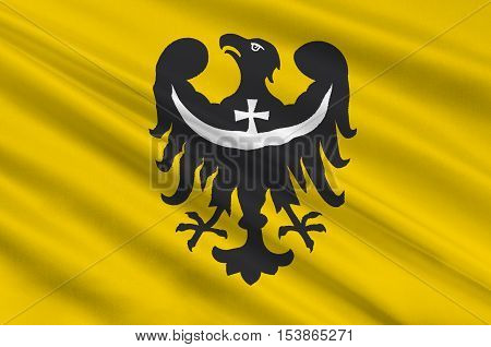 Flag of Lower Silesian Voivodeship or Lower Silesia Province in Poland. 3d illustration