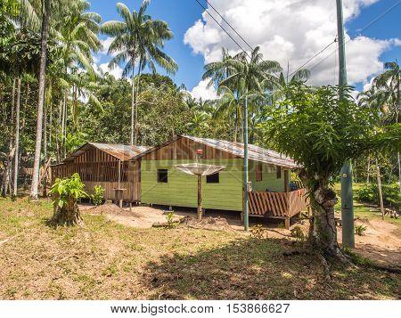 Village In The Jungle