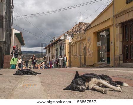 Street Of Tunja