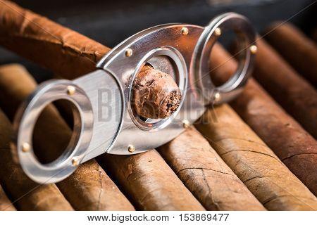 Closeup of cutting off cigar tip and cigars