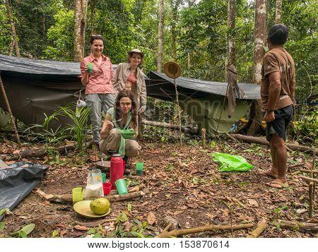 Camp In The Jungle