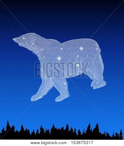 Night sky with Ursa Major star constellation
