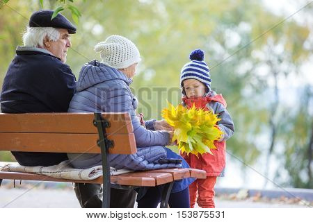 Grandparents and grandson enjoying beautiful autumn day in park