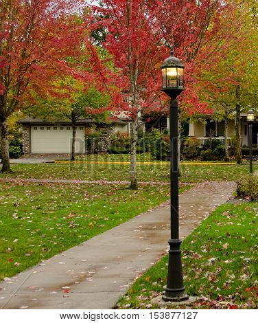 Alley With Red Maple Foliage And Street Lights