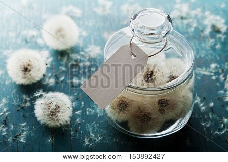 Blowball or dandelion in wishing jar with paper tag on vintage background. Make a wish concept, unusual gift or present.