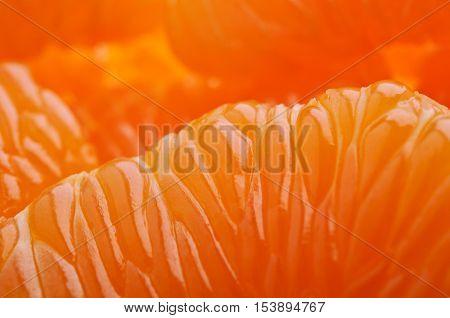 Closeup Of Mandarin