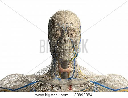Human anatomy face, front of head covered in network of dots. Bio-tech skin, disease or molecular biology. Sensory points or cells. 3D illustration.