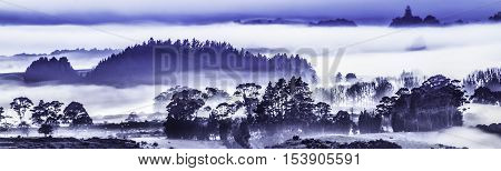 Panorama early morning cold misty blue  landscape. Trees silhouetted against misty blue background