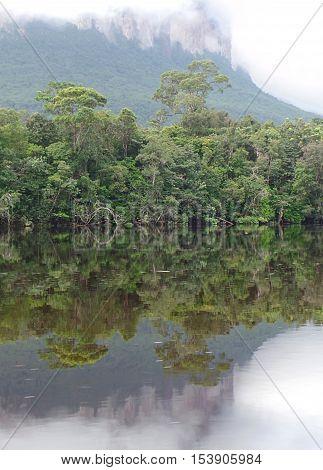Mirror. reflection of a tepui in the Carrao river. Gran Sabana, Venezuela