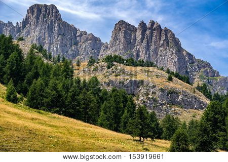 Aiguilles de Chabrieres (Chabrieres Needles) and tree line in summer. Hautes Alpes, Ecrins National Park, Southern French Alps, France