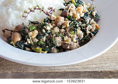 Thai Food, Rice Topped With Stir-fried Minced Pork And Basil And Barometer Earthstar