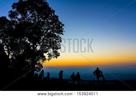 Tourist And Big Tree Silhouetted With Stunning Sunset
