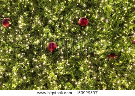 christmas trees and red ornament at night