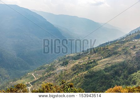 Cultivated fields on steep mountainside in Nepal