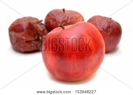 Red rotten apples and healthy apple. Natural color