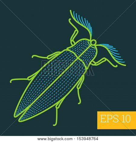 Bug Insect  Outline Vector