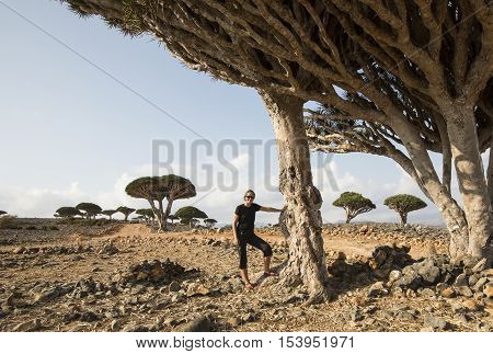 young woman at a forest of dragon blood trees dracaena cinnabari on an island of Socotra
