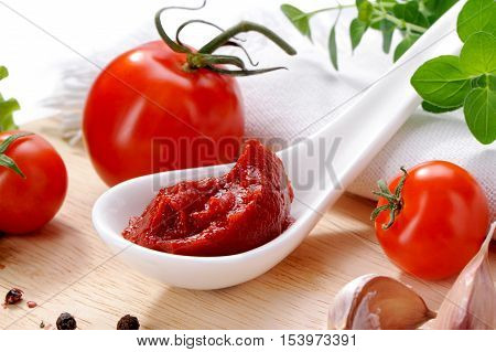 tomato paste in porcelain spoon close-up on kitchen board with sauce ingredients, garlic, black pepper peas and oregano on white background