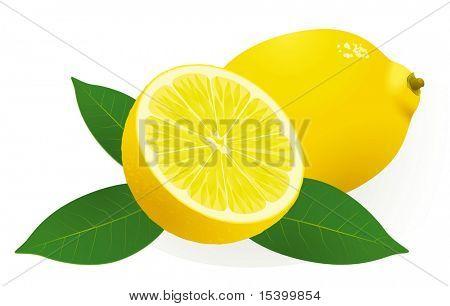 Lemon. Vector.