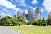 Financial district (CBD) in Sydney from the Botanical Garden poster